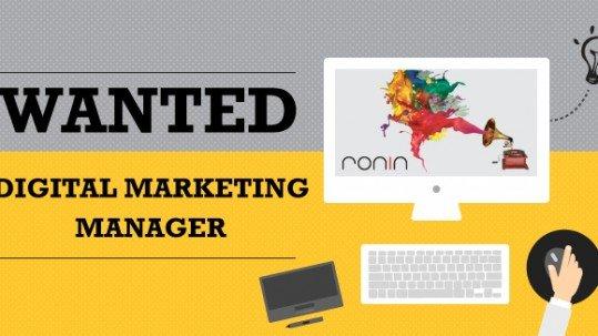 digital marketing manager[1]