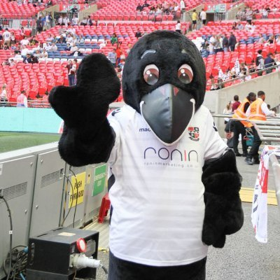 Bromley Football Club mascot RONIN The Raven wearing a white branded RONIN T-shirt at sponsored Bromley FC match